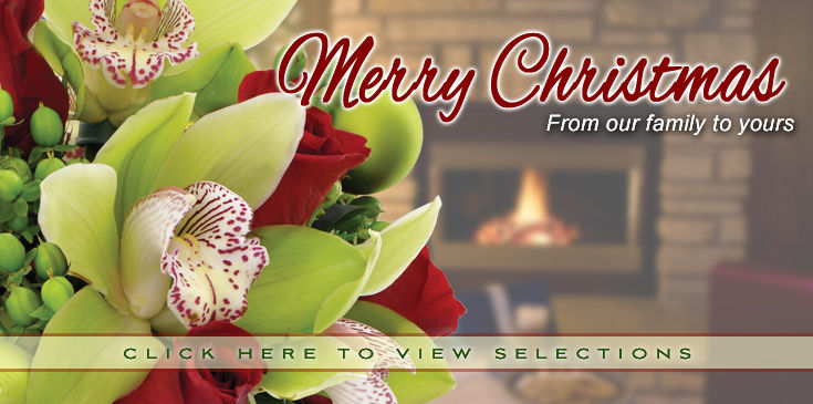 Celebrate Christmas with beautiful flowers!