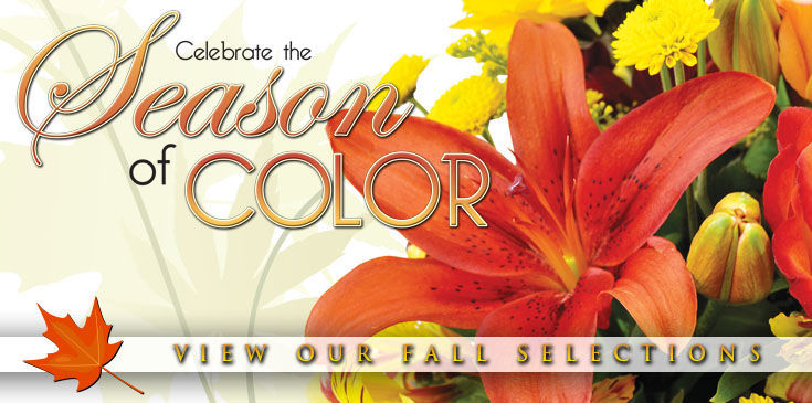 Celebrate fall with beautiful colors!